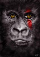 Gorilla by l3raindead
