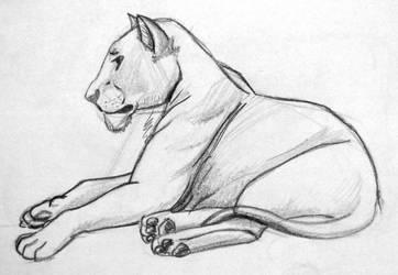 Lion 3 - Lying Lioness by KiaraSLZ