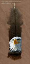 Bald Eagle Portrait by Nambroth