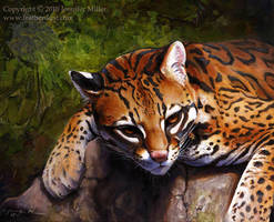 Ocelot by Nambroth