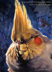 Cockatiel Cheeks by Nambroth