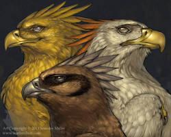 Phoenix Trio by Nambroth