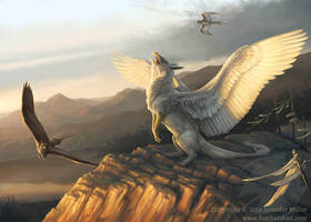The Gryphon's Call by Nambroth