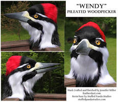 Wendy, the Pileated Woodpecker Mask by Nambroth