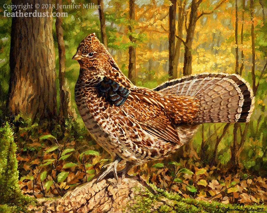 Autumn Grouse by Nambroth
