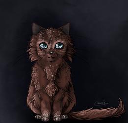 Cat Eyes in the Dark by onestarmarcher