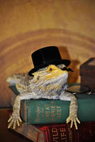 Sir Lizard by karatechick13