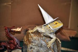 Wizard Lizard II by karatechick13