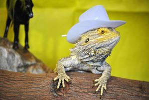 Cowboy Dragon II by karatechick13