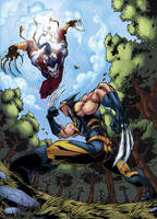 Wolverine VS Ripclaw by logicfun