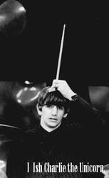 Ringo The Unicorn by monieo