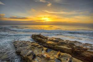 Seal Sunset by LifeCapturedPhoto