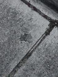 A Long, Cold Walk Home by DigitalMenace