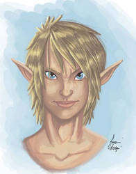 proof of painting and coloring on Link by Rasmussen891