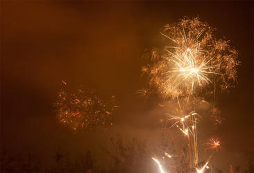 Firework2 by mceric