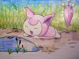 Skitty by MsSZing