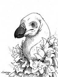 Vulture (Inktober #27) by Likopinina