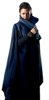 The Last Jedi Leia Organa (2) - PNG by Captain-Kingsman16