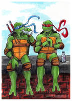 TMNT: Leo and Raph by loolaa