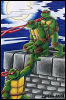 Turtles on Roof coloured by loolaa