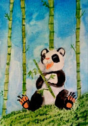 Baby Panda  by fruitbatslyra