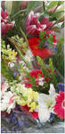Market Place Flowers 1 by zorichan