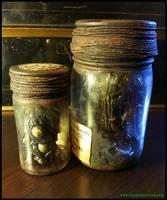 Starkweather-Moore Expedition Specimen Bottles by JasonMcKittrick