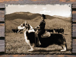 The Corgi Rider by cerebulon