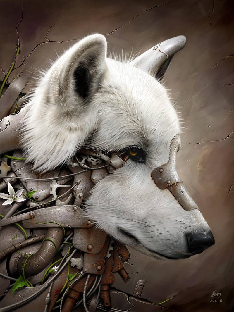 Wild 1 - The Wolf by BenF