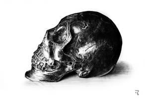 Metal skull by Trichardsen