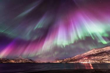 Aurora Brutality by Trichardsen