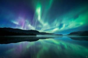 Waltz of the Polar Lights by Trichardsen
