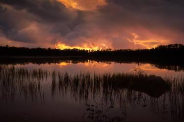 Burning by Trichardsen