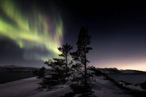 Conflicting lights by Trichardsen