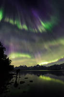 Aurora photographer by Trichardsen