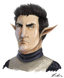 [Request] Meduhi, the Hyrulean Guard by Dargonite