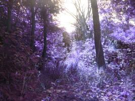 Purple Hills by 5p34k
