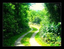 Eden's road by 5p34k