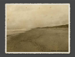 The Beach by 5p34k