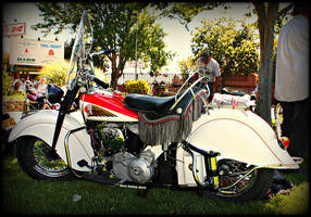 Indian Chief by StallionDesigns