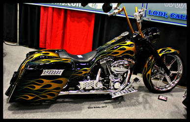 Pot O' Gold Bagger. by StallionDesigns