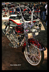 Electra Glide by StallionDesigns