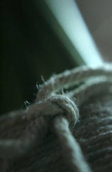 Knot Always by kedralynn