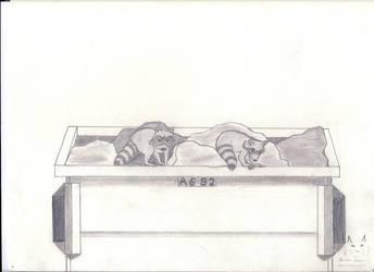 Raccoon Scavengers by Border-Walker