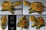 Turtle Gourd C15-1 by ART-fromthe-HEART