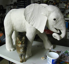 Elephant Gourd_Kitty approves by ART-fromthe-HEART