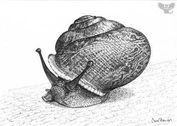 Snail Poe by ART-fromthe-HEART