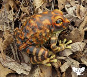 Frog #156 - Montane Litter Frog by ART-fromthe-HEART