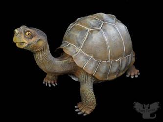 Eve the Pinta Island Tortoise by ART-fromthe-HEART