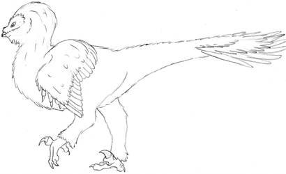 Tytoraptor clamorlarua Sketch Full body by Zemeraire